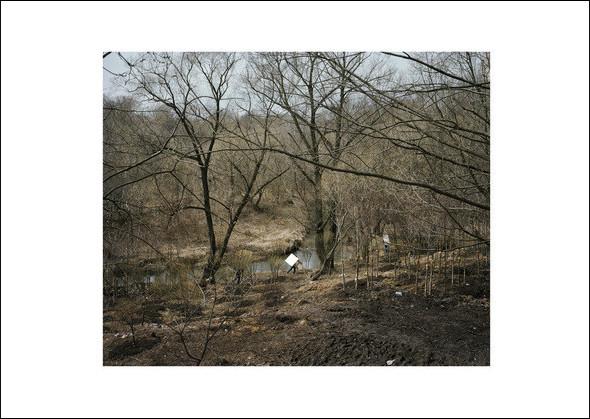 Матвеевское. Из серии «Пастораль», 2010. Изображение № 6.