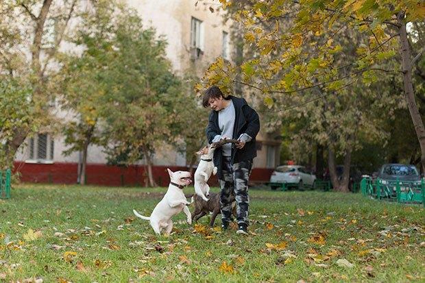 О чем следует знать, прежде чем заводить собаку. Изображение № 7.