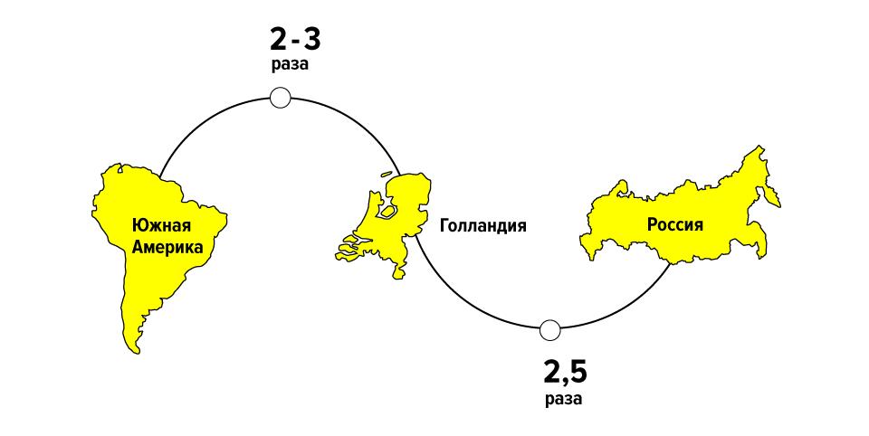 Потоки цветов: Как Florist.ru делает глобальный бизнес на розах и герберах. Изображение № 2.
