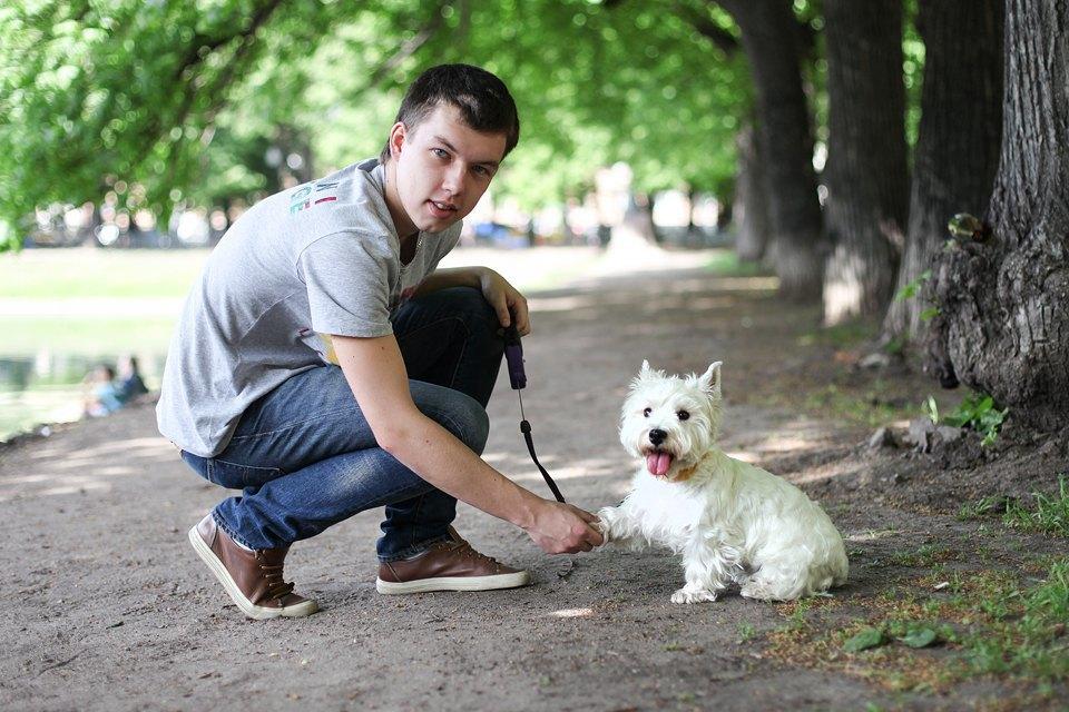 Собачья работа: Кто убирает засвоими питомцами. Изображение № 1.