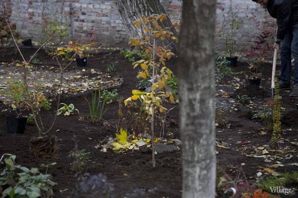 На Китай-городе возрождают сад XV века. Изображение № 21.