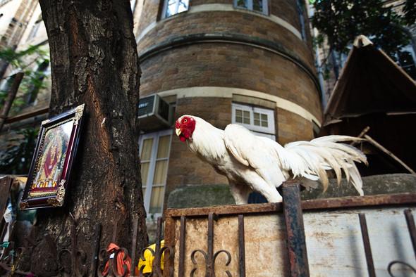 www.foto-realistika.ru. Изображение № 10.
