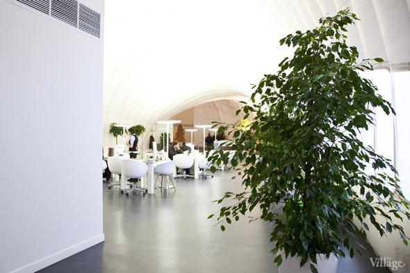 Офис недели (Москва): «В лесу». Изображение № 12.