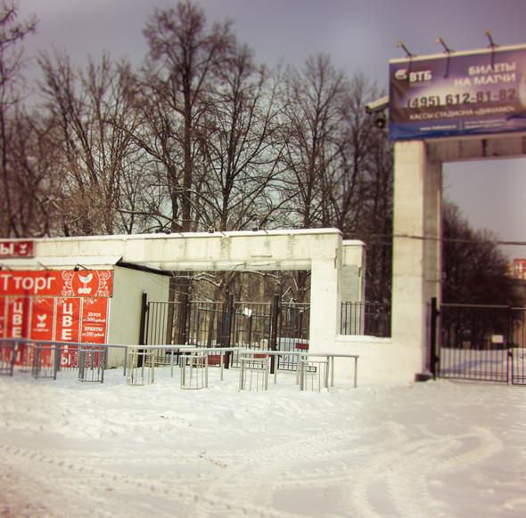 В зоне риска: Стадион «Динамо». Изображение № 3.