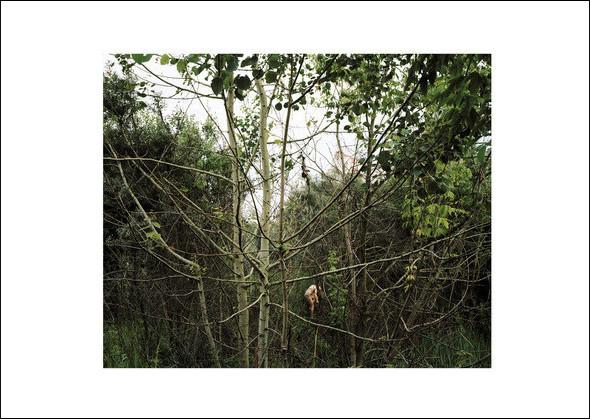 Дзержинский III. Из серии «Пастораль», 2009. Изображение № 4.