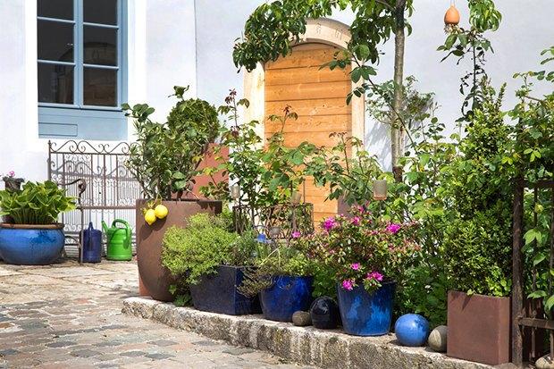 Как обновить сад перед началом дачного сезона. Изображение № 3.