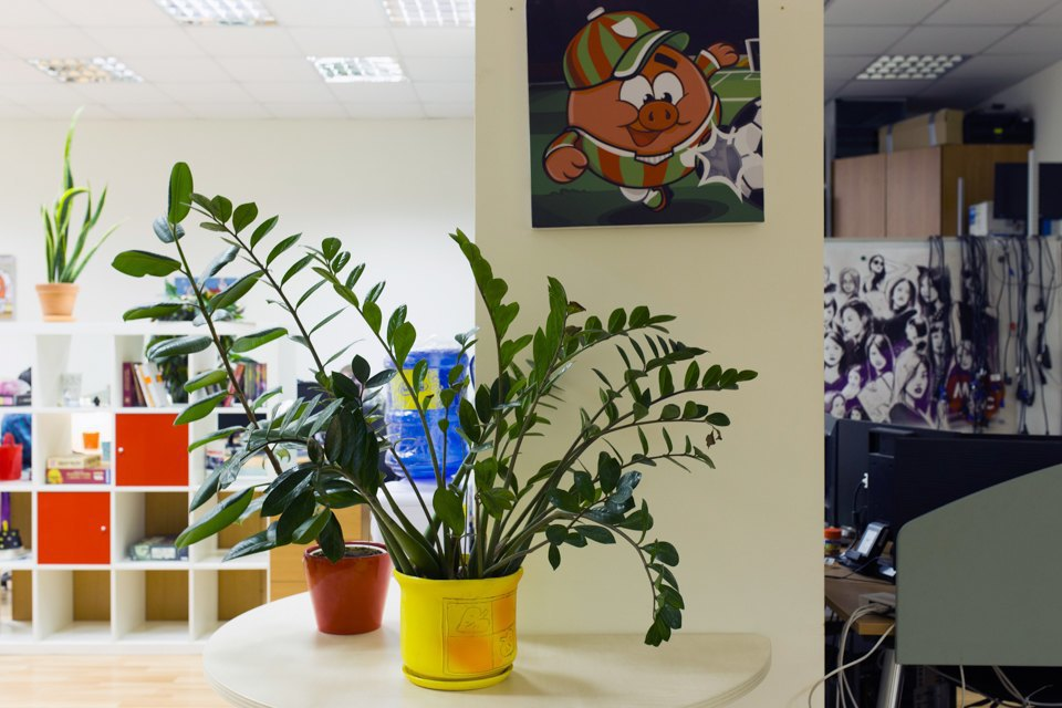 Как работают в офисе «Смешариков». Изображение № 5.