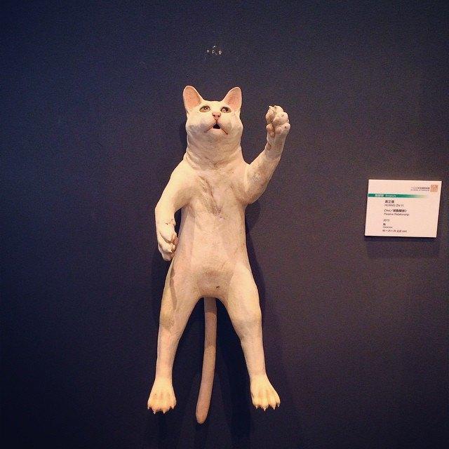 Музейные коты вснимках Instagram. Изображение № 8.