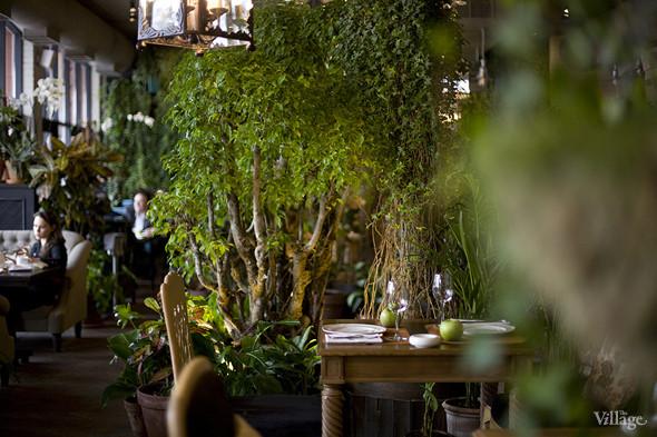 Новое место: ресторан The Caд. Изображение № 18.