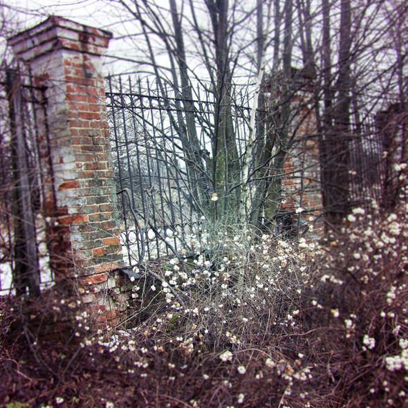 В зоне риска: Усадьба Гребнево. Изображение № 31.