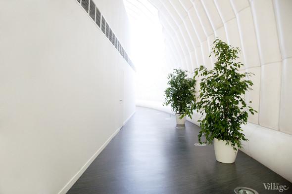 Офис недели (Москва): «В лесу». Изображение № 19.