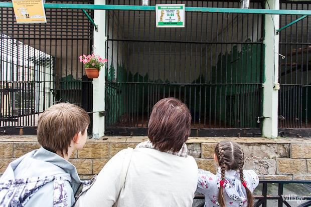 Как живёт и меняется Ленинградский зоопарк . Изображение № 43.