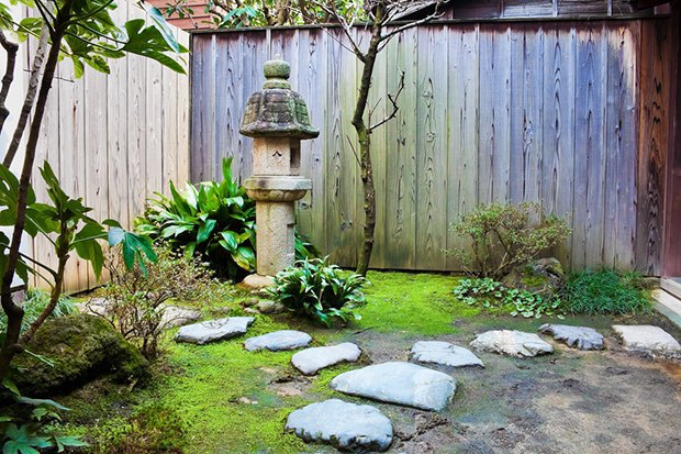 Как обновить сад перед началом дачного сезона. Изображение № 2.