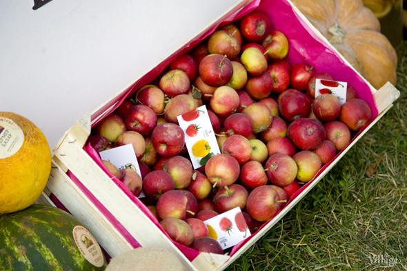 На базаре «Фермер»  можно было купить мытые яблоки, сливу и другие фрукты. Также здесь резали дыни и арбузы. Изображение № 32.