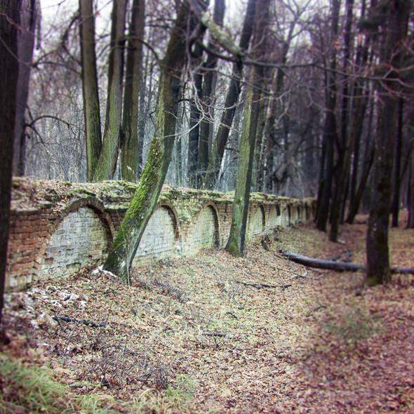 В зоне риска: Усадьба Гребнево. Изображение № 30.