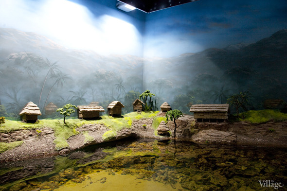 Первый океанариум открылся в Москве. Изображение № 18.