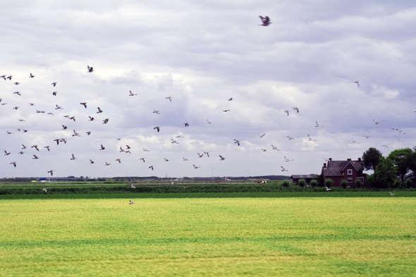 Изображение 6. Европа из окна поезда.. Изображение № 6.