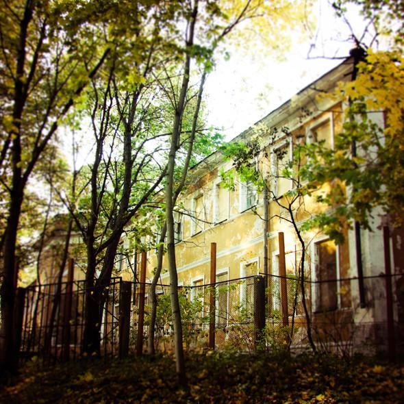 В зоне риска: Египетский павильон и Померанцева оранжерея в Кузьминках. Изображение № 16.