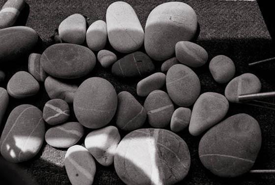 Коллекция камней Сьюзан Зонтаг. Изображение № 6.