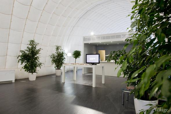 Офис недели (Москва): «В лесу». Изображение № 6.