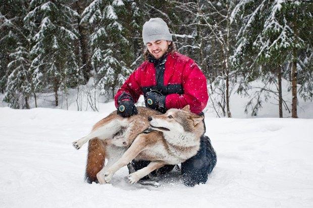 Личный опыт: Что делать, если вы нашли собаку. Изображение № 6.