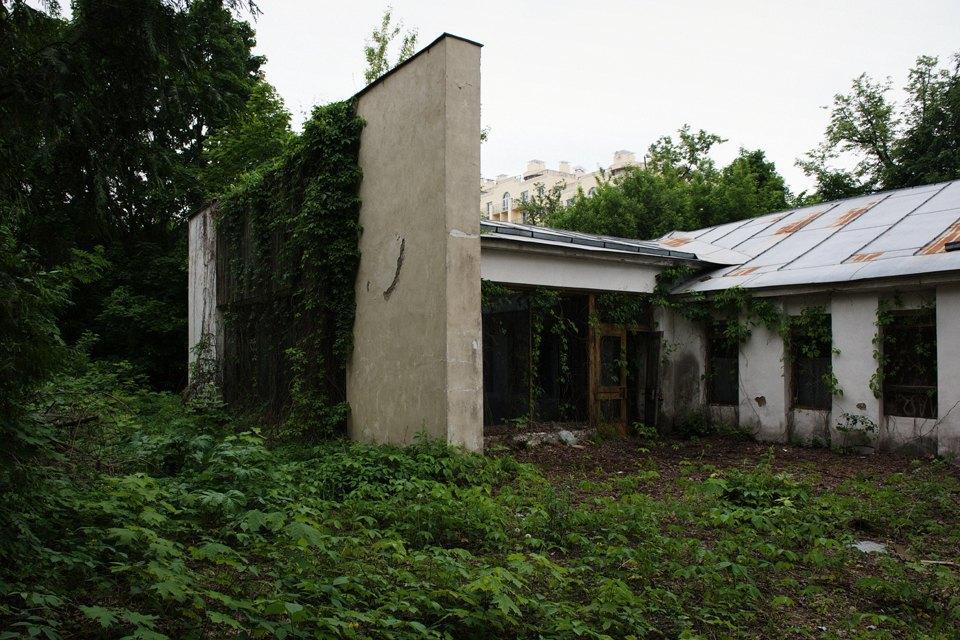 Как Евгений Соседов восемь лет защищает «Архангельское». Изображение № 5.