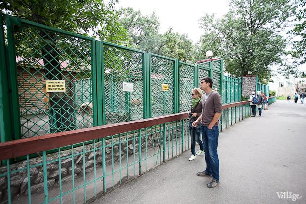 Как живёт и меняется Ленинградский зоопарк . Изображение № 5.