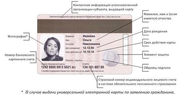 Раскрыт облик российских электронных паспортов будущего. Изображение № 3.