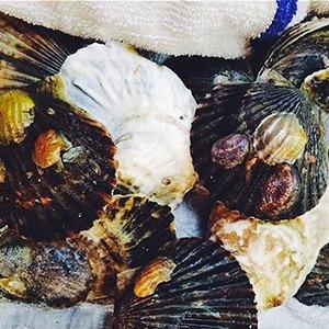 Пищевая плёнка: 41 красивый Instagram седой. Изображение № 91.
