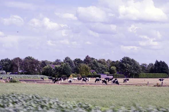 Изображение 12. Европа из окна поезда.. Изображение № 12.