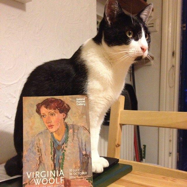 Музейные коты вснимках Instagram. Изображение № 17.