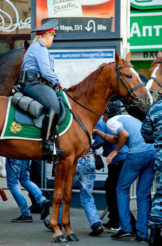 На проспекте Мира дежурит отряд конной полиции.. Изображение № 3.