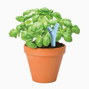 Датчик Parrot Flower Power для ухода за растениями — Вишлист на Wonderzine
