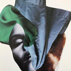 На кого подписаться: Сюрреалистичные коллажи художницы Лии Роша-Парис — Искусство на Wonderzine