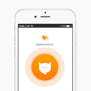 Что скачать: Приложение для перевода с кошачьего на человеческий MeowTalk — Развлечения на Wonderzine
