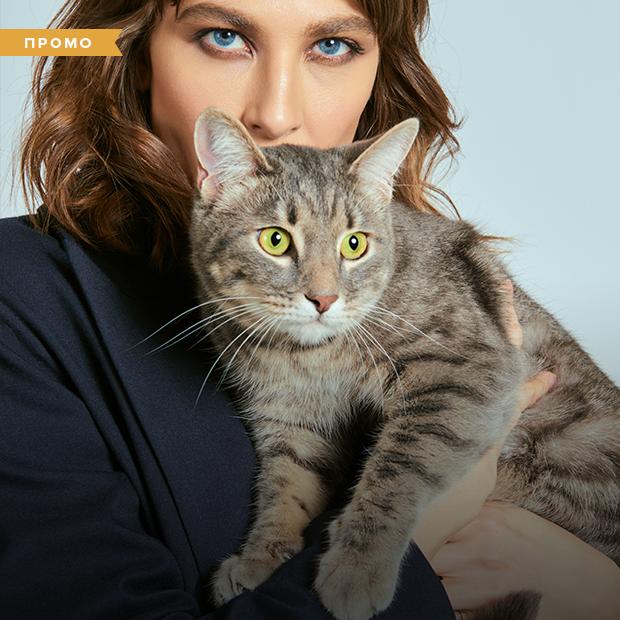 «Мой кот — мой патронус»: Девушки о сходстве со своими питомцами