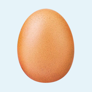 Фотография куриного яйца стала самым популярным постом в Instagram
