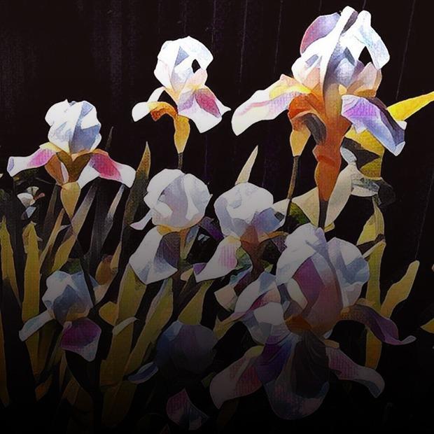 Фильтр или искусство: Художники  и иллюстраторы о приложении Prisma — Искусство на Wonderzine