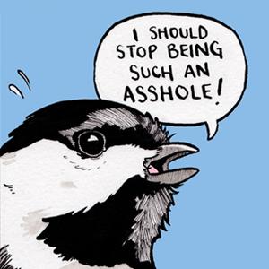 На кого подписаться: Комиксы об экзистенциальном кризисе глазами птиц — Жизнь на Wonderzine
