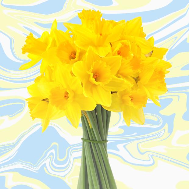 Чем заняться весной: Все планы