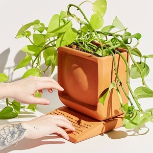 Лето в квартире: Как добавить света и зелени дому — Стиль на Wonderzine