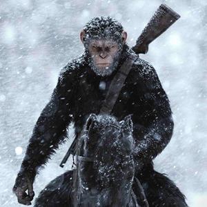 Эволюция духовности: Что говорит о людях «Планета обезьян» — Кино на Wonderzine