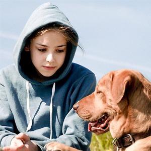 Верный друг: 10 фильмов с любимыми собаками в важной роли — Кино на Wonderzine