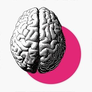 Есть ли «женские» и «мужские» способности: 5 вопросов о нейросексизме — Жизнь на Wonderzine
