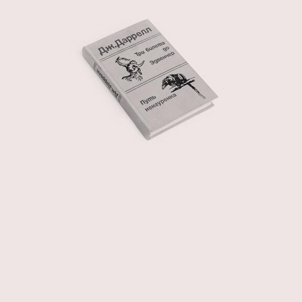 Географ  Софья Гаврилова  о любимых книгах — Книжная полка на Wonderzine