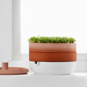 Горшок IKEA для проращивания семян — Вишлист на Wonderzine