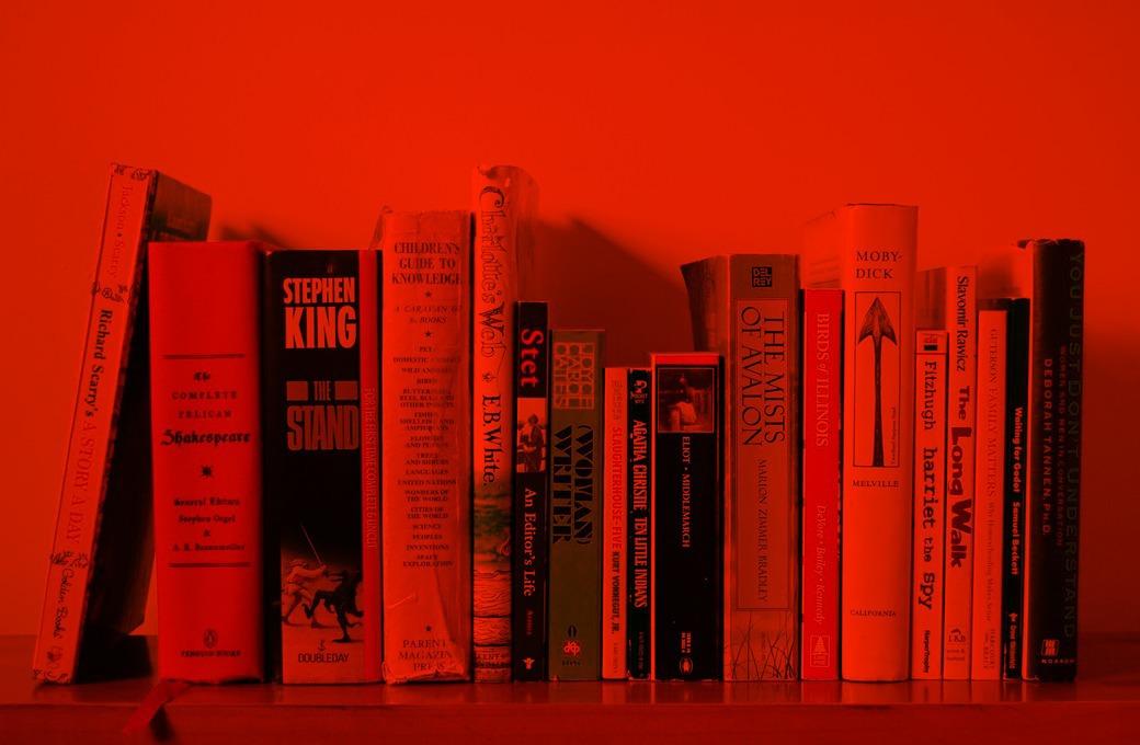 На что похожи  главные книжные дебюты 2012 года — Книги на Wonderzine