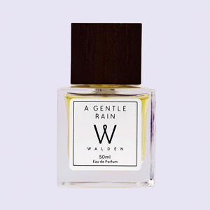 Всё течёт: 9 ароматов с запахом дождя — Ароматы на Wonderzine