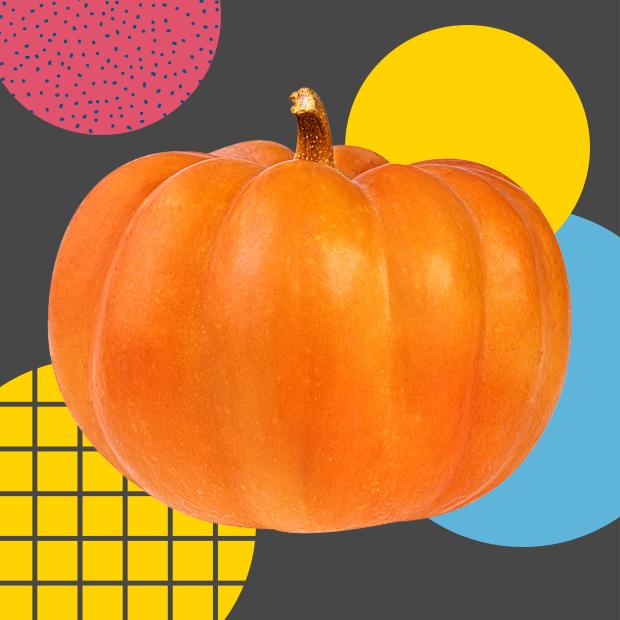 Чем заняться осенью:  Все планы