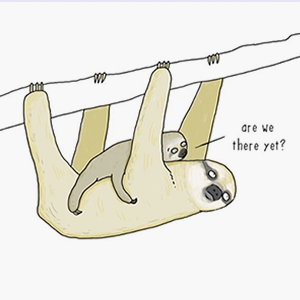 На кого подписаться: Комиксы о говорящих животных — Жизнь на Wonderzine